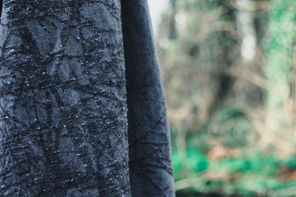 Rowan Bay Wildwood Pipit